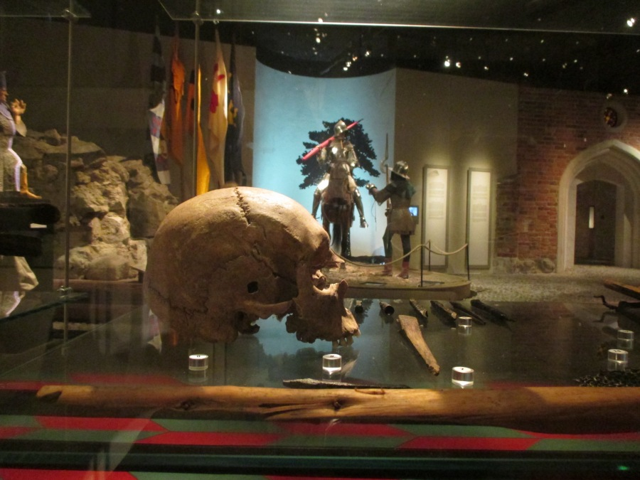 Skull with mortal wound, Medieval Museum